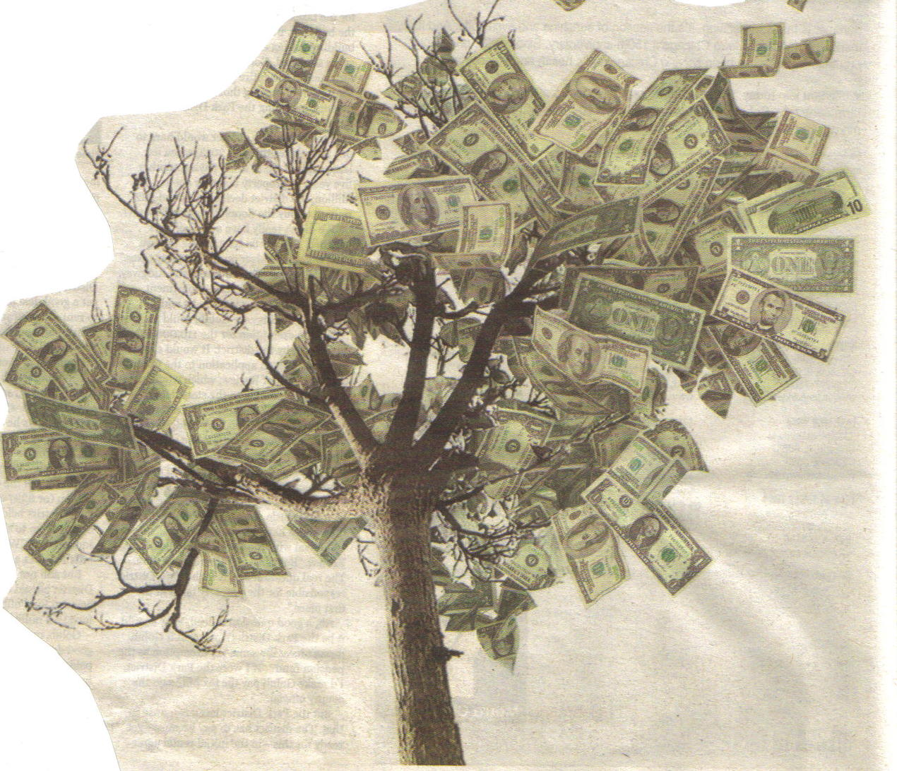 #285 – Suicide CCLXXXV – The Money Tree – Go Find The Others