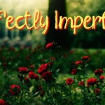 perfectly_imperfect-41998